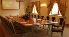 Sala konferencyjna na 120 osób, Żabia Wola, w obiekcie Hotel Palatium***
