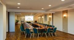 Sala konferencyjna na 100 osób, Gdańsk, w obiekcie Hotel Amber***