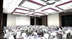 Sala konferencyjna na 300 osób, Dąbrowa Górnicza, w obiekcie Holiday Inn Dąbrowa Górnicza
