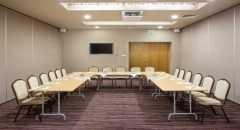 Sala konferencyjna na 40 osób, Siewierz, w obiekcie Hotel Natura Residence**** Business & SPA