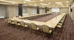 Sala konferencyjna na 160 osób, Siewierz, w obiekcie Hotel Natura Residence**** Business & SPA
