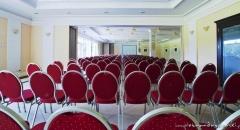 Sala konferencyjna na 450 osób, Wąsowo, w obiekcie Pałac Wąsowo